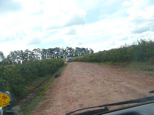 A dirt track in Kenya seen from inside a vehicle